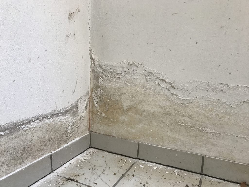 Turbo Feuchte Wände – Der Hausdoktor PN26